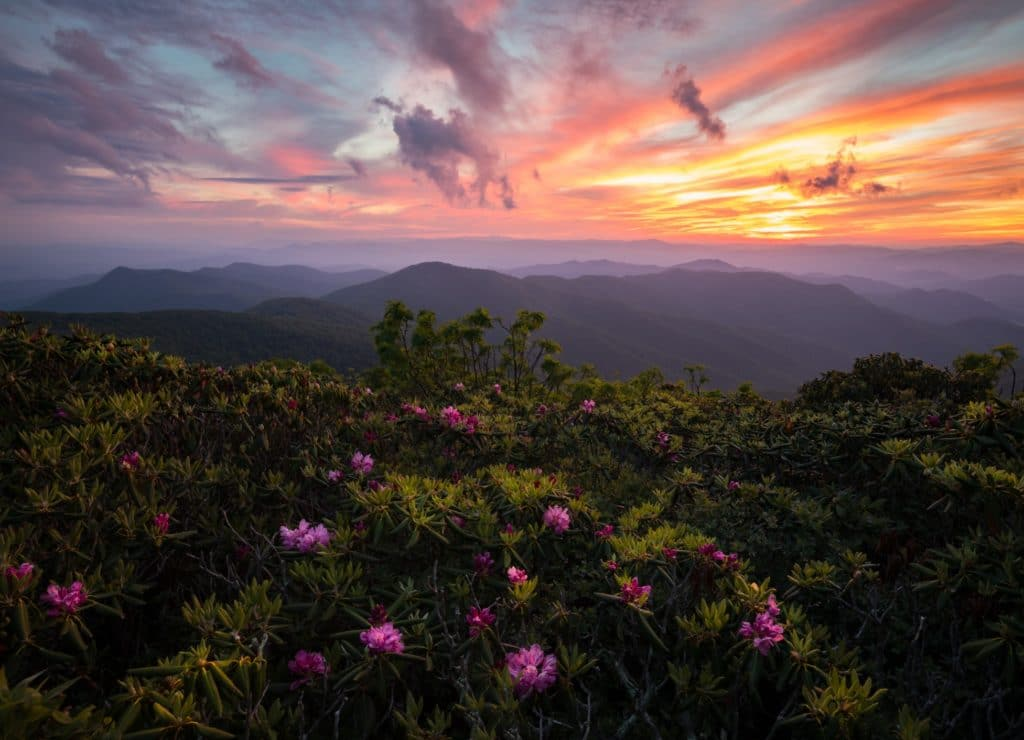Things to do along the Blue Ridge Parkway Near Our Bed and Breakfast