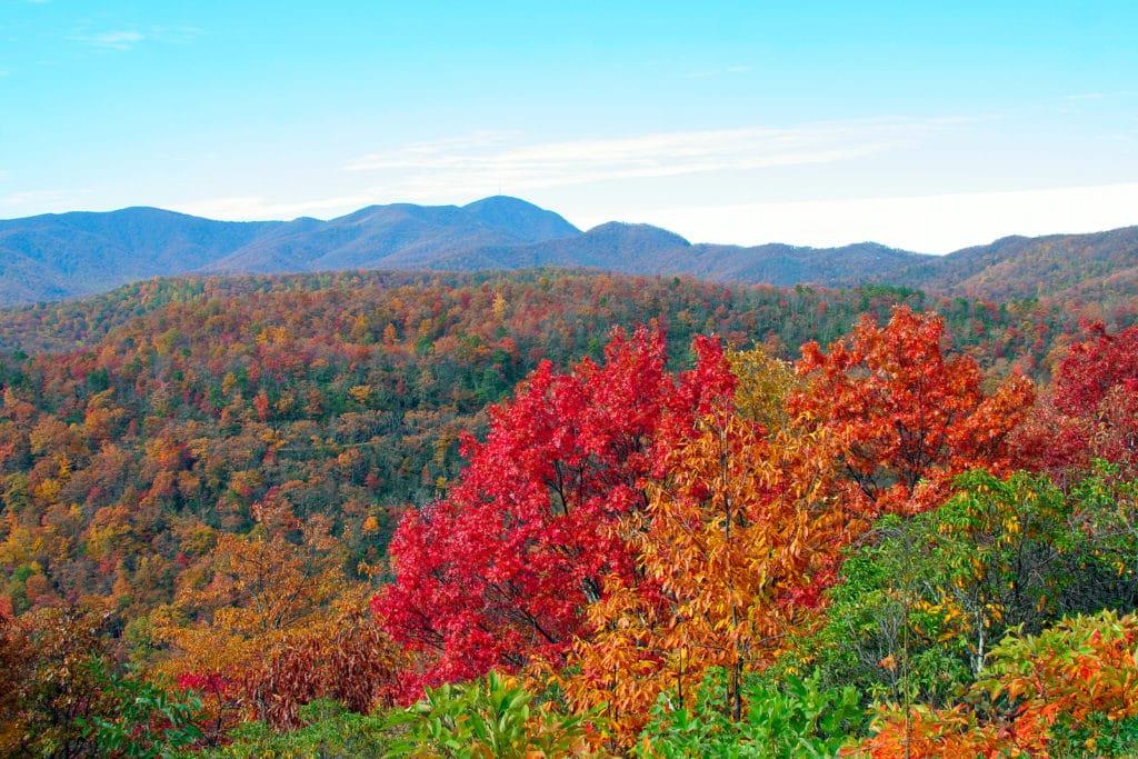 Fall Foliage on the Blue Ridge Parkway